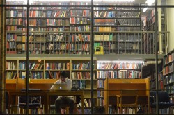 Is Open Access content driving a divide in the library sector?