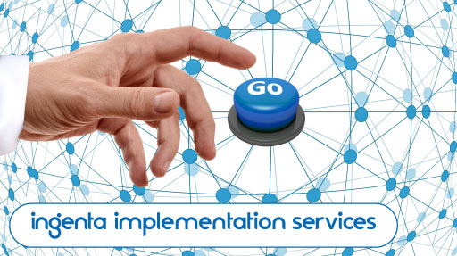 Ingenta Implementation Services for customized product integration